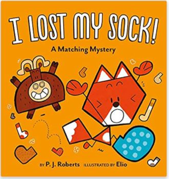 I Lost My Sock: by P.J. Roberts